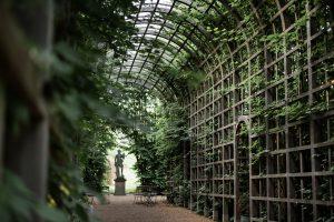 Treillage för trädgårdsbröllop, sandad gång omgiven av grönska
